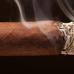 Cigar Smoking Picture 2